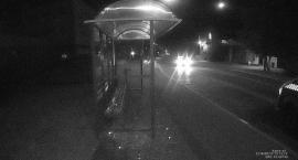 Strażnicy: Mężczyzna w czerwonych spodenkach niszczył przystanek