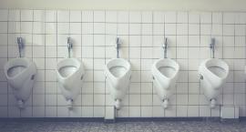 Lepszy dron i wyciąg niż publiczna toaleta, czyli po co komu budżet obywatelski