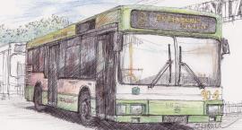 Jak kursują szczecineckie autobusy w święta? Sprawdź rozkład jazdy