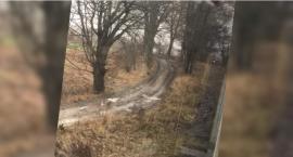 Tragedia na torach. Mężczyzna zginął pod kołami pociągu. Chciał umrzeć?