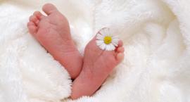 Miejskie in vitro w Szczecinku: Po dwóch latach dwie pary spodziewają się dziecka
