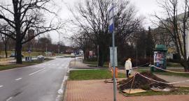 Zima minie bez przystanków autobusowych?