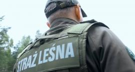 Strażnicy leśni pomogli odnaleźć zaginioną 83-latkę
