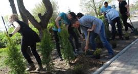 Uczniowie z ZST w Szczecinku posadzili 300 drzew