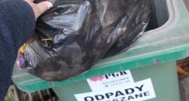 Radni przegłosują podwyżkę cen śmieci, nie będą liczone z wodą. Jak długo?