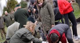 Jedno dziecko, jedno drzewo. Do akcji zapoczątkowanej w Szczecinku przyłączają się kolejne miasta