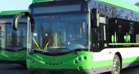 Autobusy miejskie bez opłat. Dość drogi przepis na sukces?