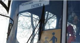 W Gminie Szczecinek i powiecie będą nowe linie autobusowe. Znikną białe plamy komunikacyjne?