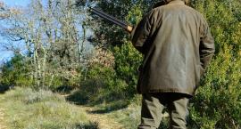 """Na działce usłyszał strzały z broni. """"Prosiłem, żeby nie strzelali do moich kaczek"""""""