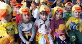 Inwazja kaczek, lisów i zajęcy, czyli Festiwal Zwierząt w Szkole Podstawowej w Starym Chwalimiu
