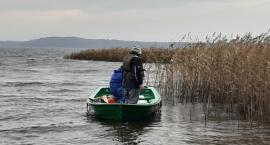 Jezioro Wierzchowo: Druga tura zarybiania