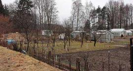 Są dzikie ogródki działkowe – będzie kemping