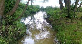 Szokujące wyniki badań wody! Wojna z trucicielami