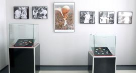 Medale papieskie w Muzeum Regionalnym