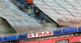 Kot na dachu, dachu, woda w piwnicy, płonące samochody i garaż