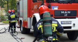 Pożary, wypadki, osy i mężczyzna w szambie