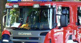 Szerszenie na plebanii, łabędź w pułapce i 9 pożarów