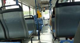 Autobusy miejskie w wersji świątecznej