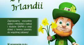 Szukamy wiosny z patronem Irlandii