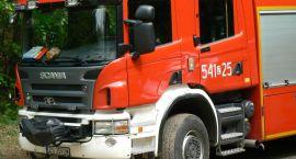 11 interwencji szczecineckich strażaków. Pożary, pszczoły, ptaki i pomoc celnikom