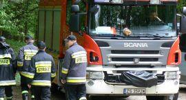 Pracowicie u strażaków. Osy, tlenek węgla, pożary i zalana piwnica
