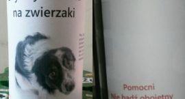 Puszki z Gdyni w Szczecinku zachęcają do datków na schronisko