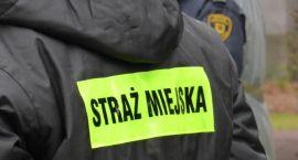 Zmiany w prawie, zmiany w Straży Miejskiej. Zwolnień nie będzie