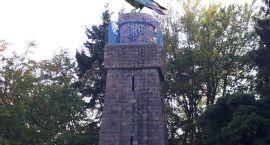 W Szczecinku majówkę uczcimy krukiem na wieży