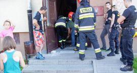 Strażnicy ratowali zaskrońca i rannego bociana