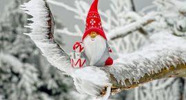 Boże Narodzenie przez cały rok