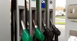 Paliwa: W Szczecinku ceny stoją w miejscu