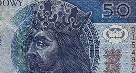 """""""Wisimy"""" miastu pieniądze – ponad 50 złotych na statystyczną"""