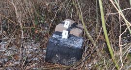 Tajemnicze przesyłki w lesie
