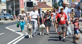 Parada Psów przeszła ulicami Jarosławia