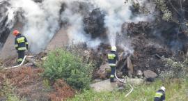 Pożar dzikiego wysypiska odpadów przy ul. Krakowskiej