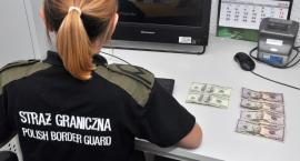 Pokazali pogranicznikom banknoty z gry planszowej