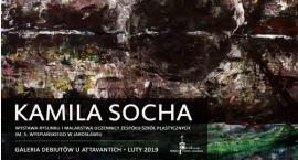Wystawa Kamili Sochy