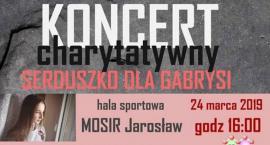 Koncert charytatywny Serduszko dla Gabrysi