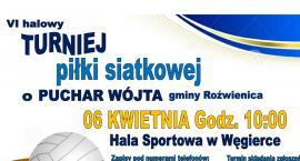 VI halowy turniej piłki siatkowej o Puchar Wójta gminy Roźwienica