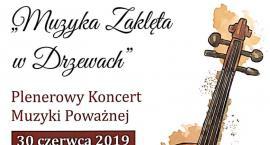 Muzyka zaklęta w drzewach - koncert w Dworze w Boratynie
