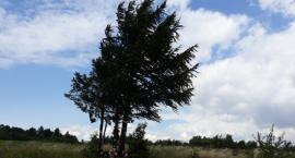 Wakacje na ziemi jarosławskiej: Na najwyższą górę powiatu