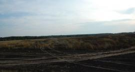 Spłonęło 40 hektarów pszenicy