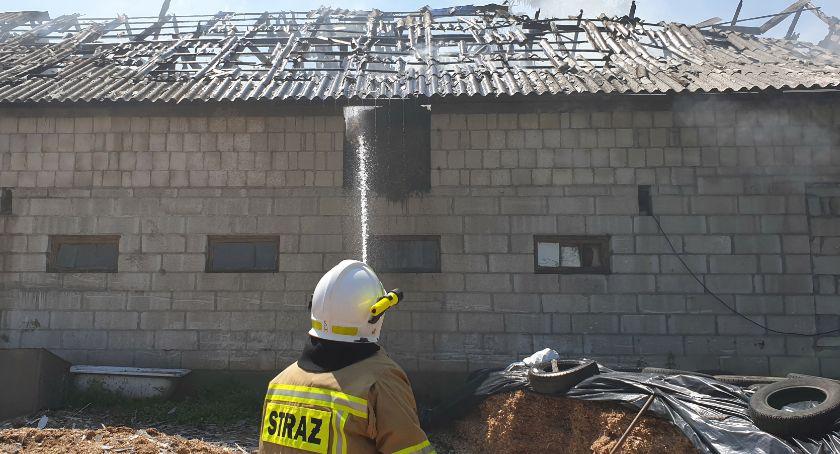 Pożary i interwencje straży, Pożar obory Siemieniu Nadrzecznym [FOTO] - zdjęcie, fotografia