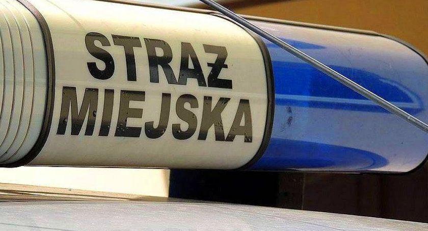 Kronika kryminalna, Prowadzili kradziony skuter Zareagowała straż miejska! - zdjęcie, fotografia