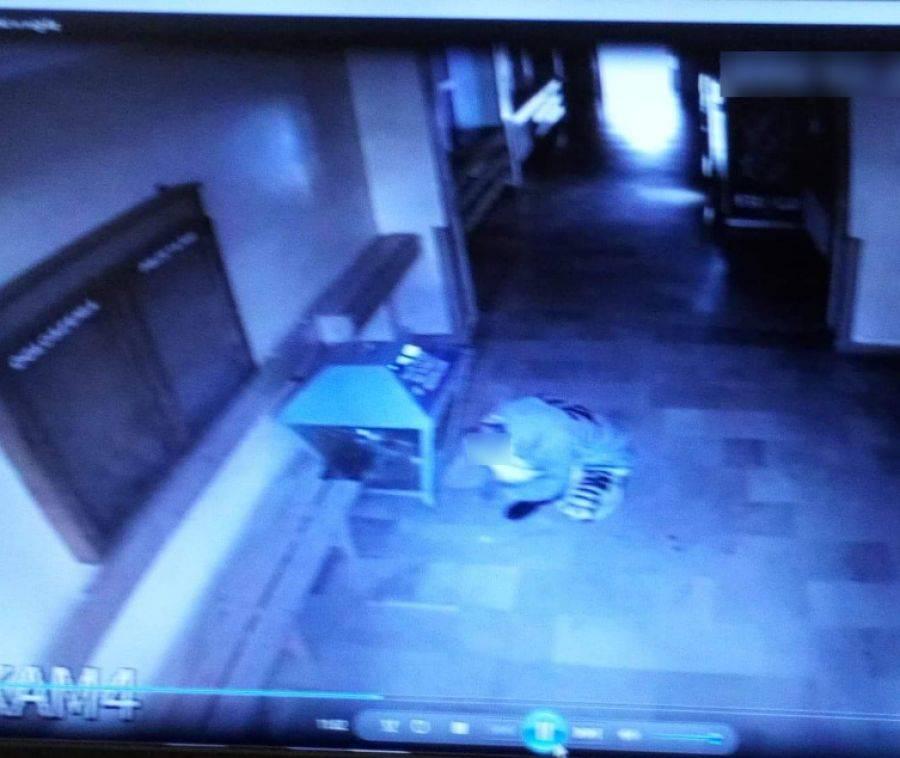 Kronika kryminalna, Młodzi złodzieje okradli kościół [FOTO] - zdjęcie, fotografia