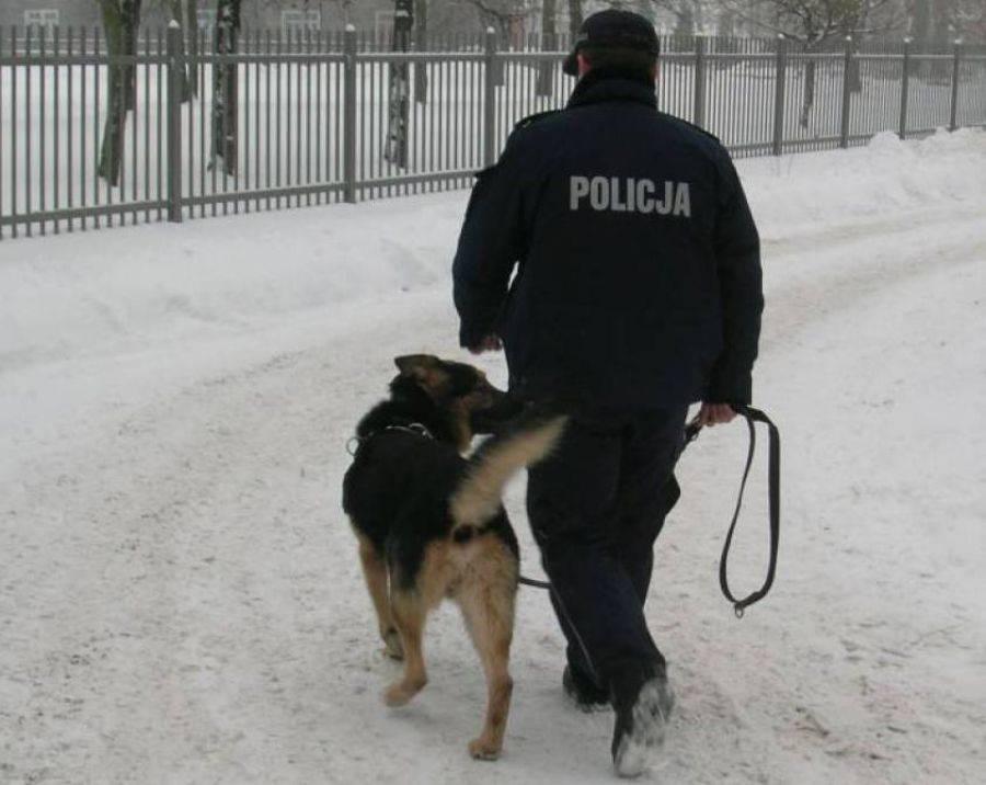 Newsy, Policja szuka świadków kradzieży - zdjęcie, fotografia