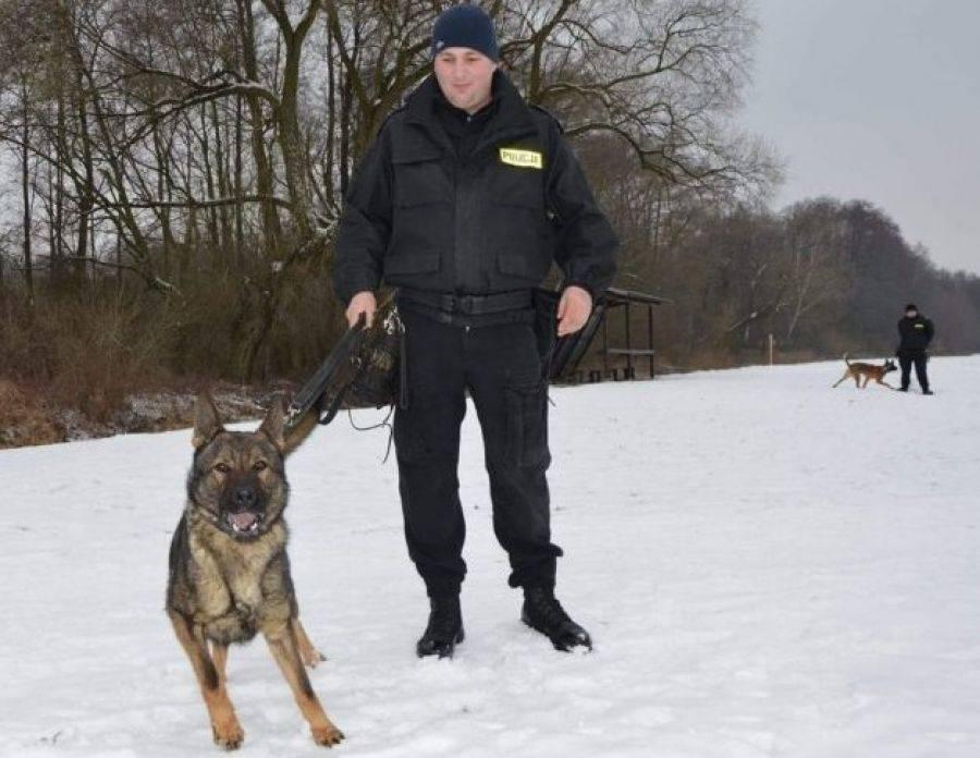 Komunikaty policji , Czworonożni funkcjonariusze zaczynają służbę [FOTO] - zdjęcie, fotografia