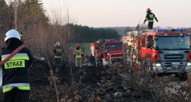 Groźny pożar na terenie gminy Piątnica! Do akcji ruszyło 5 zastępów straży pożarnej [FOTO]