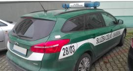 Służba Celno-Skarbowa poszukuje funkcjonariuszy