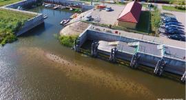 Port Łomża odcięty od Narwi? [FOTO]